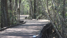 The Trembling Earth Nature Trail