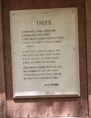 Kilmer-Poem-Trees-blog3